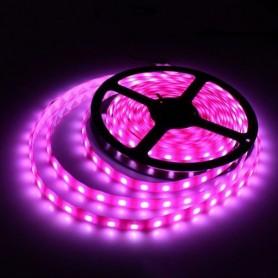 Ruban LED 5050 - Rose