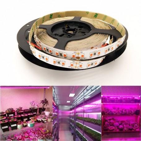 Ruban LED horticole