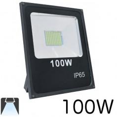 Projecteur LED 100W lumière blanc chaud ou blanc froid