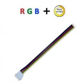 Connecteur prise mâle RGB + blanc variable
