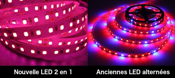 comparaison ruban LED horticole